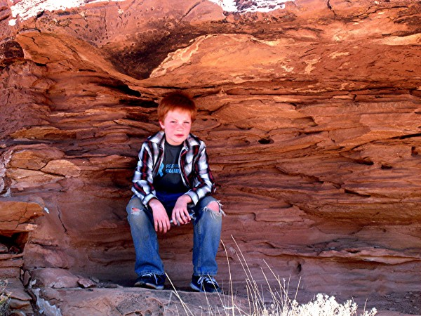 Red Head in McHood Park AZ