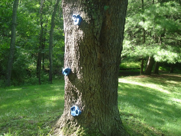 Tree Climbing Footholds
