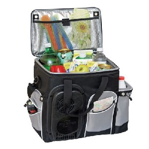 Koolatron 12V Travel Cooler